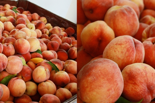 fresh okanagan peaches