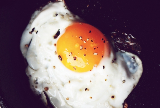 farm fresh eggs, backyard chickens, croque madame recipe
